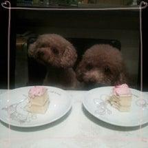 アンさんのお誕生日の…