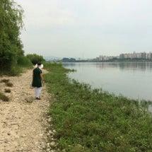 白熱した漢江散歩