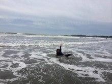 女性サーフィンスクール千葉