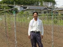 笠間の自然薯 トーマス農園の畑