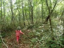 森遊びおかわり