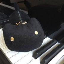 保育ピアノのほんとの…