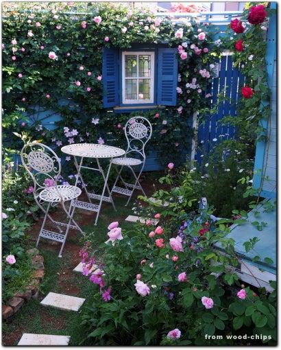 バラの庭 ブログ