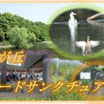 東武東上線 下赤塚駅…