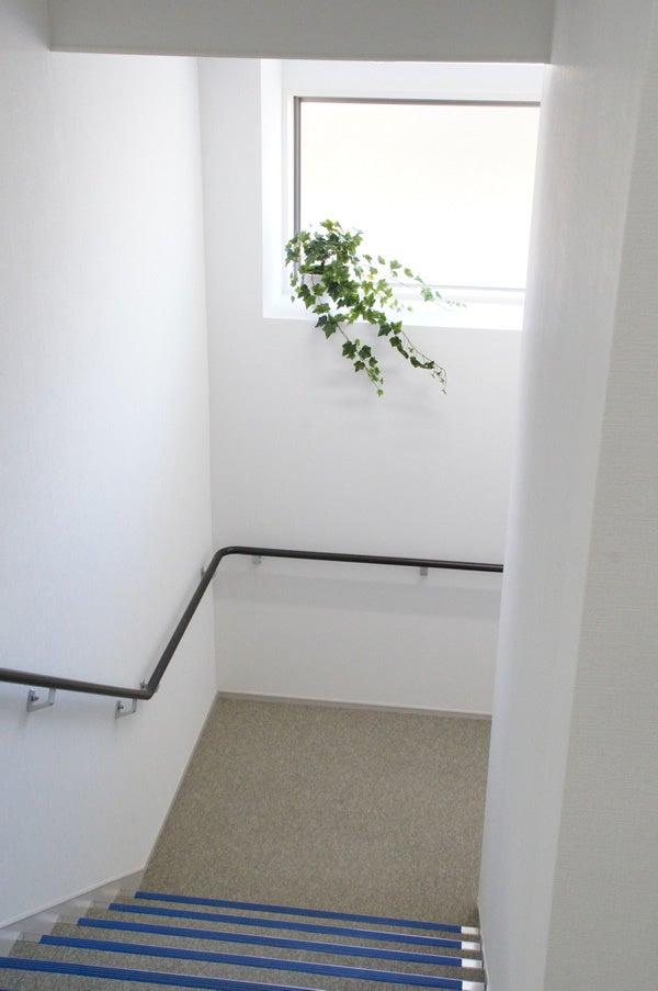 階段スペースのグリーン