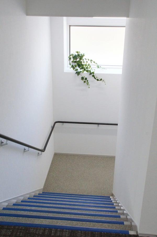 階段に緑を飾る