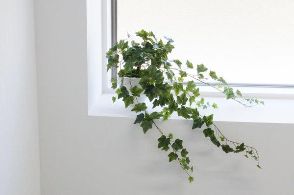 階段に人工植物