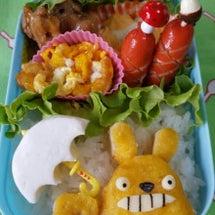 トトロ弁と母の晩御飯…