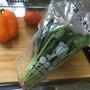 簡単!我が家の野菜た…