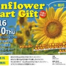 Sunflower …