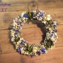 紫陽花のドライフラワ…