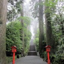 霧の箱根神社にダイブ