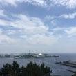 横浜で潮干狩り