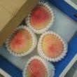 産直❗美味しい 桃❗