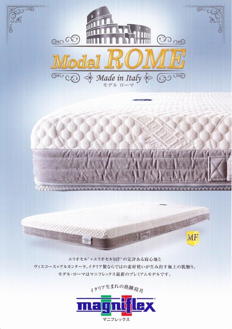 モデルローマパンフ1