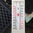 暑い…暑過ぎる´д`