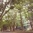 「仙台みやげ展201…