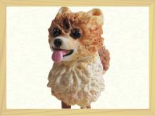 ペットミニチュア犬