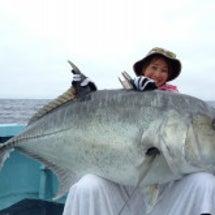 釣って、触れて、整え…