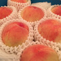 ⭐︎和歌山の桃⭐︎