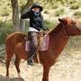 「広い草原を馬に乗っ…