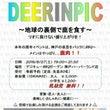 DEERINPIC