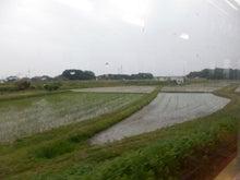 のどかな田園1