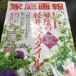 家庭画報8月号は軽井…
