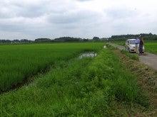 米農家さんの水田にて