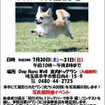 飛行犬写真展開催