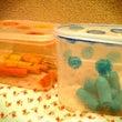 保育園 手作り玩具 …