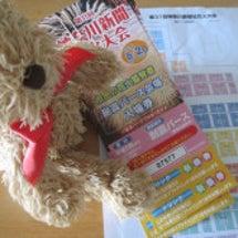 神奈川新聞 チケット
