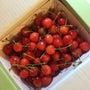 初夏の果物