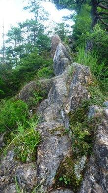 a20160709 岩淵山-感応山  00000027.jpg