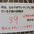 新潟県動物愛護センタ…