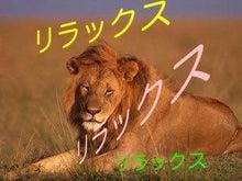 リラックスライオン