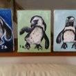 夏はやっぱしペンギン…