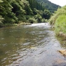 日野川とイワナとばく…