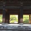 南禅寺に蓮の花〜