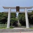 大洗磯崎神社の海の鳥…