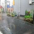 練馬区周辺、雷雨です…