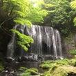 天ぷらまんじゅうと滝