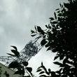 STREET & P…