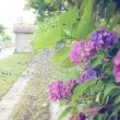 夏の記憶と地下生活