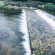 ◆島村楽器 京都カナ…