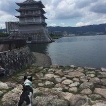 琵琶湖に来てます☆