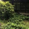 三浦の廃墟