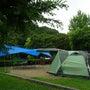 今年四回目のキャンプ…
