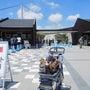 伊豆旅行に行きました