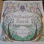 Enchanted …